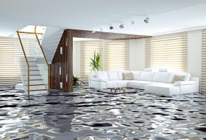 residential flood damage services